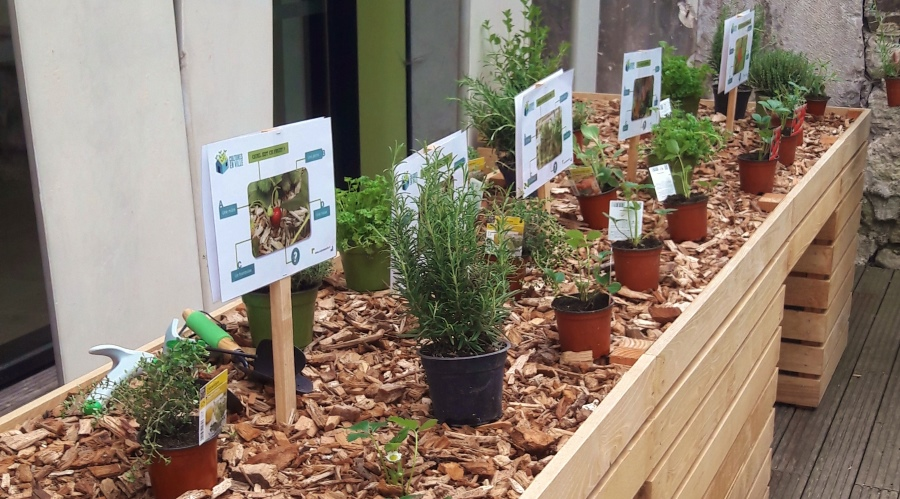 Almagejardin th rapeutique au centre blanche almage for Jardin therapeutique