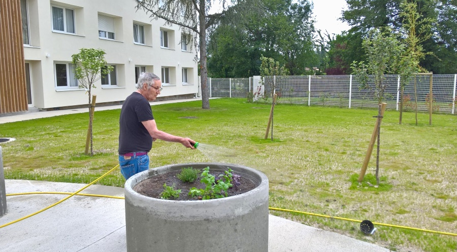 Cr ation d 39 un jardin th rapeutique almage for Jardin therapeutique